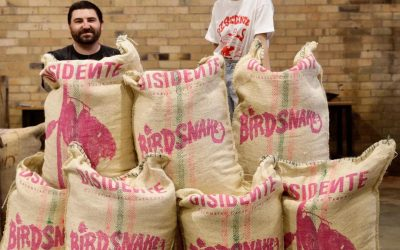 Chocolate Maker Interview: Fred Lullfitz, BirdSnake Chocolate